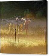 Country Clothesline Canvas Print