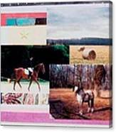 Country Collage 6 Canvas Print