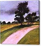 Country Driveway Canvas Print