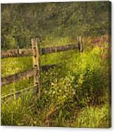 Country - Fence - County Border  Canvas Print