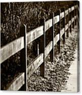 Country Fence Sepia Canvas Print