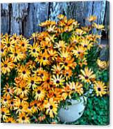 Country Floral Canvas Print