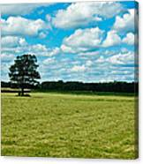 Country Horizons 1 Canvas Print