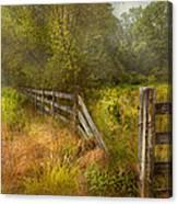Country - Landscape - Lazy Meadows Canvas Print