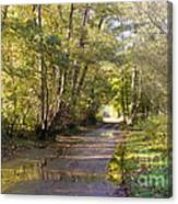 Country Lane In Autumn 3 Canvas Print