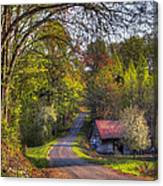 Country Lanes Canvas Print