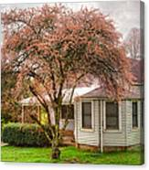Country Pink Canvas Print