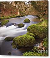 Country River Scene Wales Canvas Print
