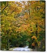 Country Road Fall Vermont Canvas Print