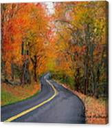 Country Road In Autumn Canvas Print