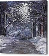 Country Road On A Wintery Night Canvas Print