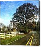 Country Road On Sauvie Island Canvas Print