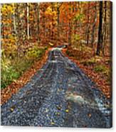 Country Super Highway Canvas Print