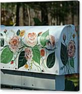 Countryside Mailbox #14 Canvas Print