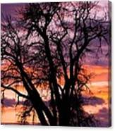 County Sunset Canvas Print