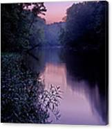 Coutois Creek Canvas Print