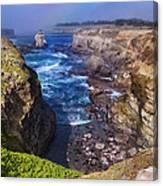 Cove On The Mendocino Coast Canvas Print