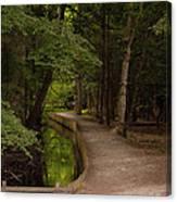 Cove Path Canvas Print