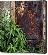 Covered In Rust Canvas Print