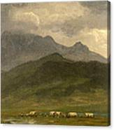 Covered Wagons Canvas Print