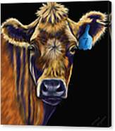 Cow Art - Lucky Number Seven Canvas Print