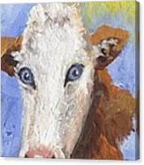 Cow Fantasy Three Canvas Print
