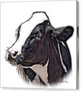 Cow Holstein - 0034 Fs Canvas Print