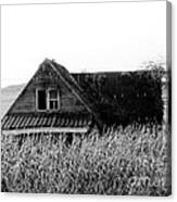 Cow House Black And White Canvas Print