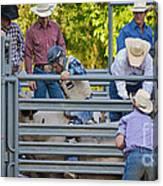 Cowboy Countdown Canvas Print
