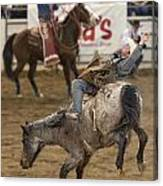 Cowboy Hang On Canvas Print