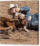 Cowboy Has Steer By Horn Canvas Print