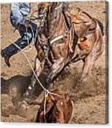 Cowboy Ropes Calf  Canvas Print