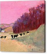 Cows 3 Canvas Print