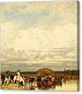 Cows Crossing A Ford Canvas Print