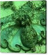 Cozumel Octopus Canvas Print
