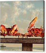 Crab Dance Canvas Print