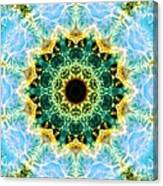 Crab Nebula I Canvas Print