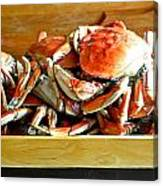 Crab To Clean Canvas Print