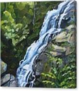 Crabtree Falls Canvas Print