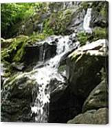 Crabtree Waterfall  Canvas Print