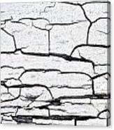 Cracked Wood Pattern Canvas Print