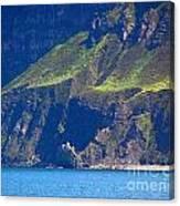 Craggy Coast 7 Canvas Print