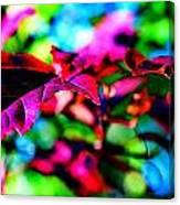 Cranberry Leaf Canvas Print