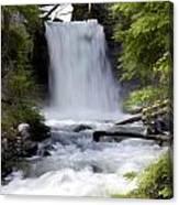 Crandel Creek Falls Canvas Print