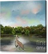 Crane Habitat Canvas Print