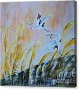 Crane On Reed Marshes Canvas Print