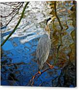 Crane Perching 1 Canvas Print