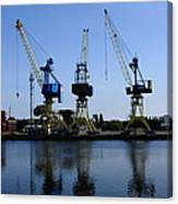 Cranes On The River Bank Canvas Print
