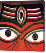 Crazy Eyes On Doors Canvas Print