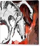 Crazy Horse 7 Canvas Print